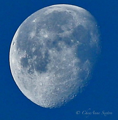 the disseminating Luna Moon 75%