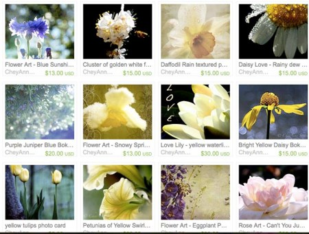 as an overview of my flower photography