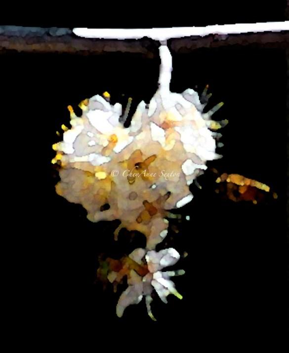 Golden globe of honey n bee too