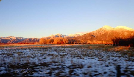 colors of winter in Taos