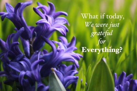 What if today, we were GRATEFUL for everything