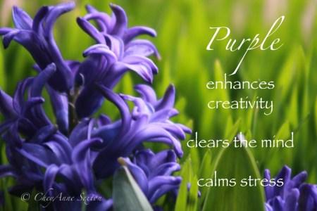 Purple, creates ease n grace