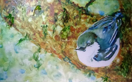 'Pigmy Nuthatch' Watercolor on Yupo by CheyAnne Sexton