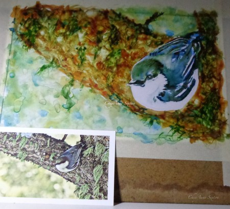 Pigmy Nuthatch watercolor on Yupo by CheyAnne Sexton