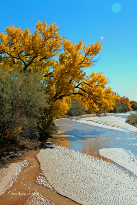 colors of the river south of ojo, north of Espa