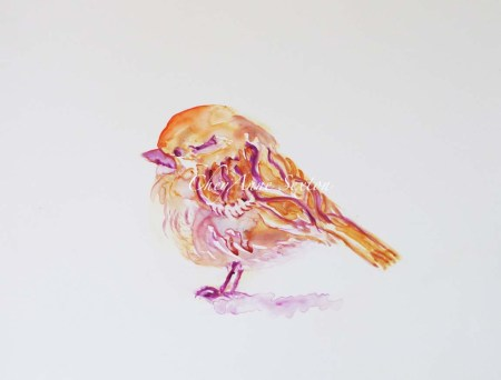 Field Sparrow watercolor on Yupo by CheyAnne Sexton