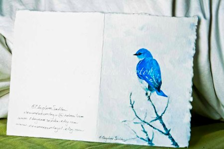 wc BlueBird Out on a Limb 5x7 watercolor on  paper by CheyAnne Sexton