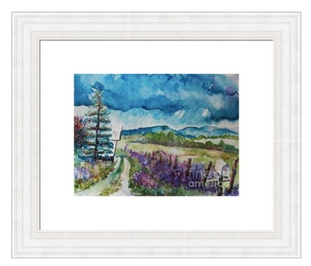 Dames Rocket Ranch in  gorgeous country style frame