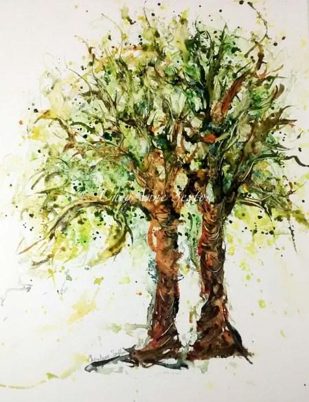wmwms wildcigartrees.jpg